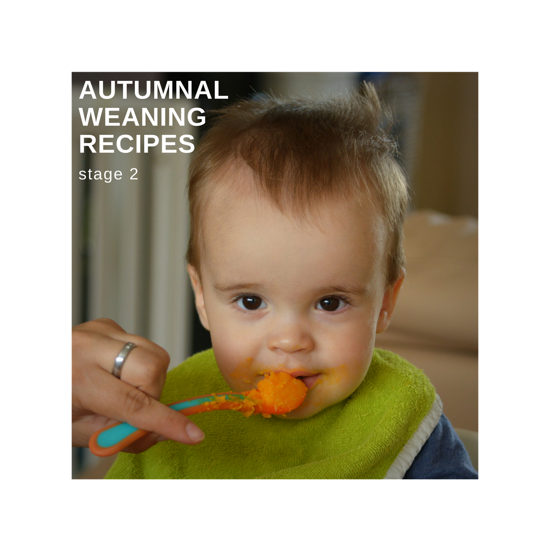 Recipes Autumnal Stage 2 Weaning Recipes Pocket Nannies