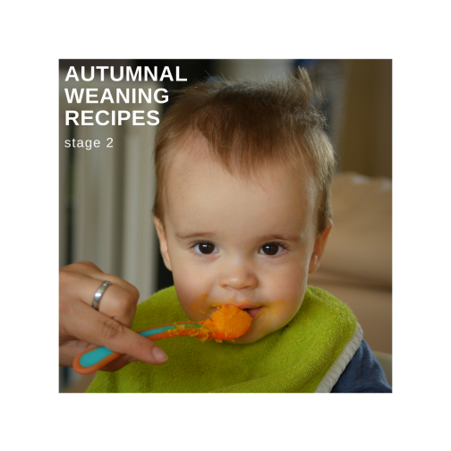 Autumnal weaning recipes