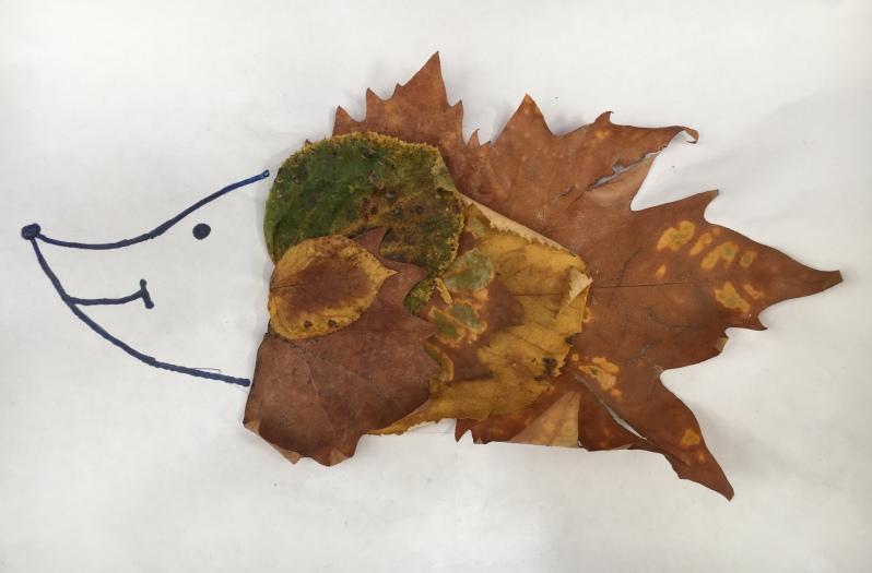 leaf hedgehog pocketnannies